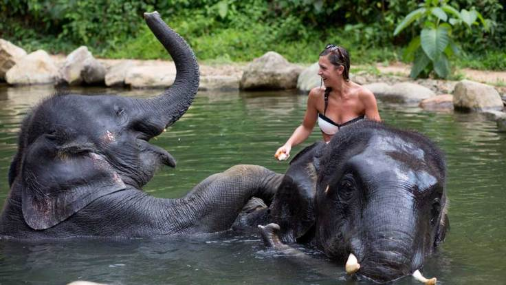 two-elephants-bathing